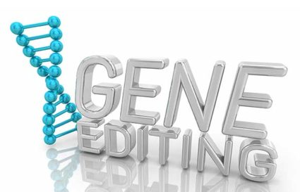 Clinical Applications of Gene Editing Technologies: HIV