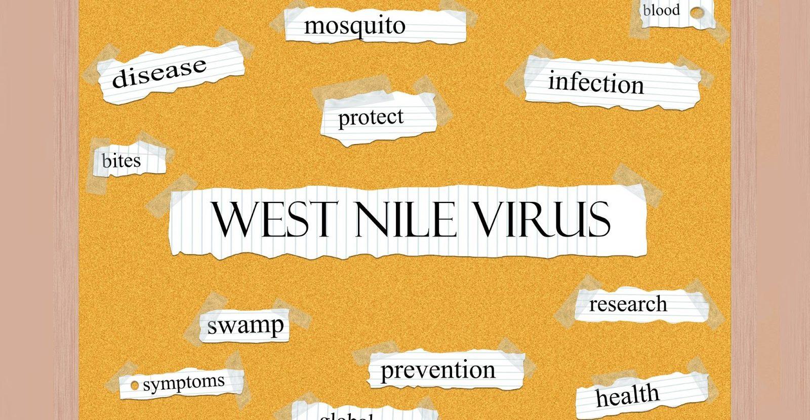 West Nile Virus Symptoms Diagnosis and Treatments