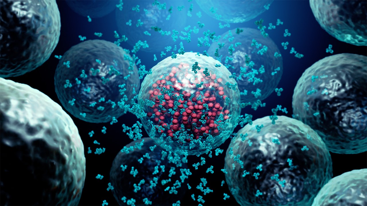 Neutralizing Antibodies for the COVID-19 treatment